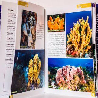 Loja Oceânica - A vida marinha no litoral sul potiguar 1